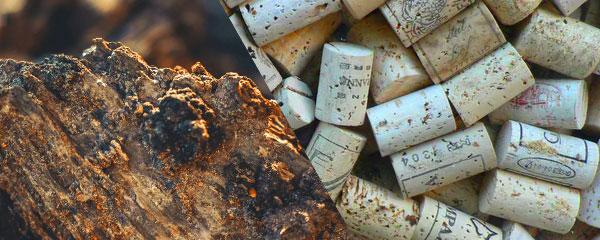vinkorkar och bark